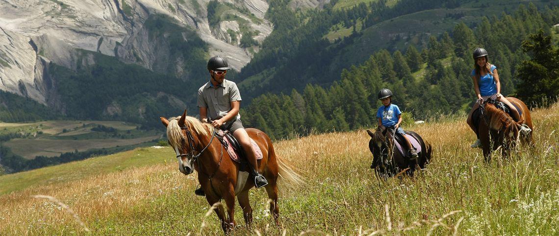 La rando à dos d'animaux :  passion équitation