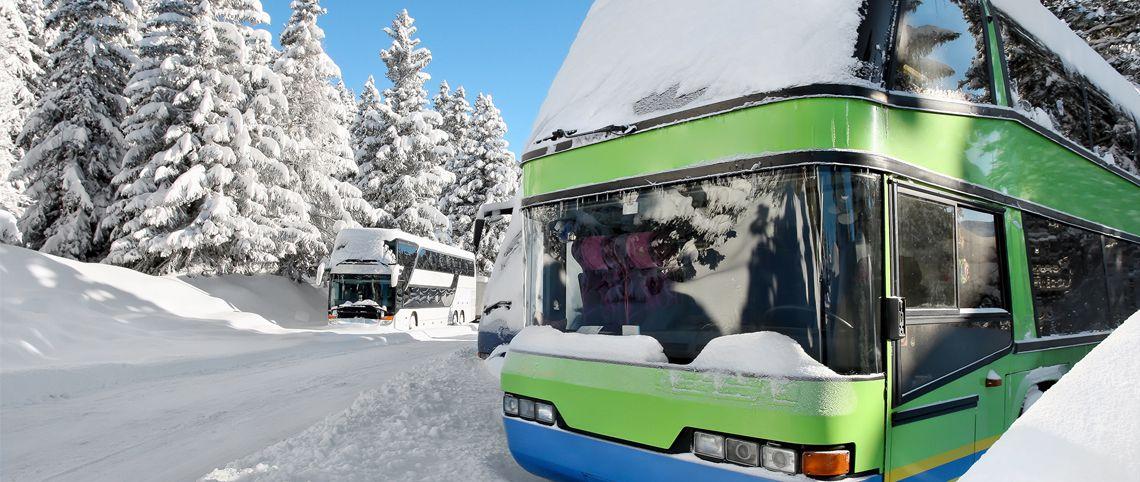 Les bus low-cost au sommet des stations
