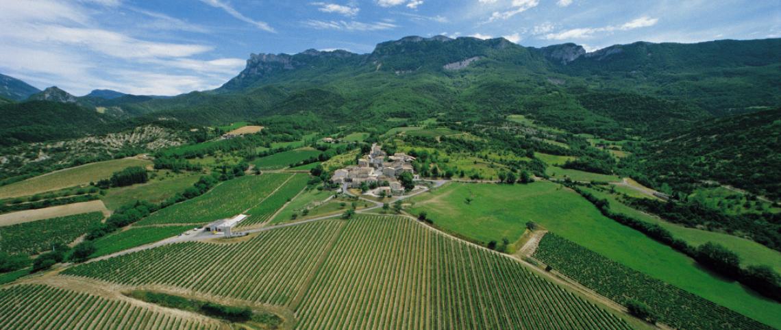 Guide des vins de montagne
