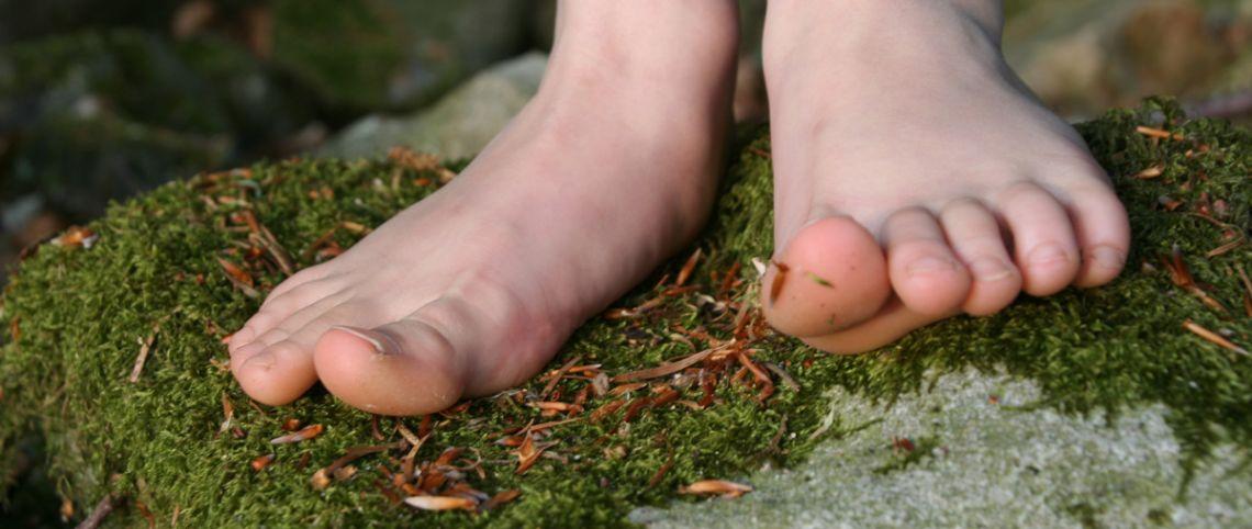 3 original walks : barefoot, aquatic, geocaching