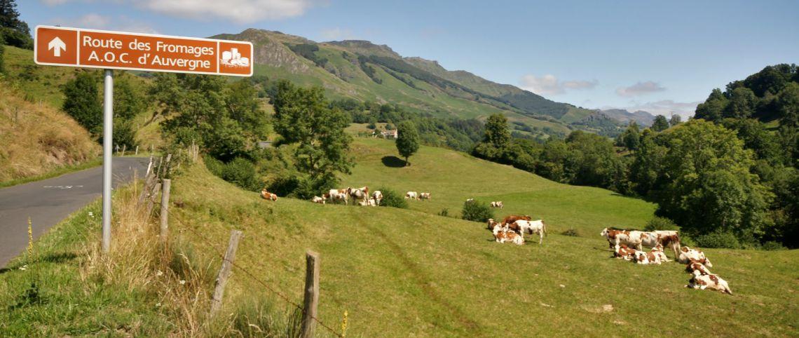 Marcher et manger : randonnées gourmandes en montagne