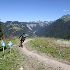 Piste de descente VTT : Pistes d'Atray