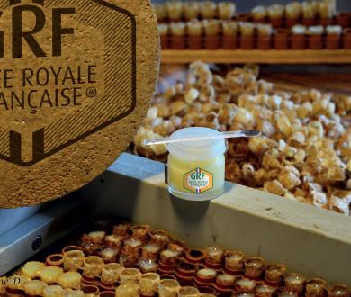 Au plus proche de la nature avec GRF-Gelée Royale Française®