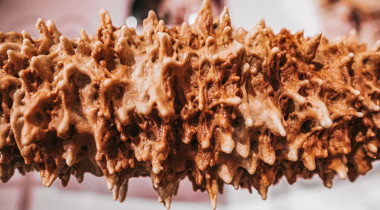 Recette : gâteau à la broche des Pyrénées