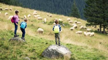 Une montagne gourmande pour les enfants !