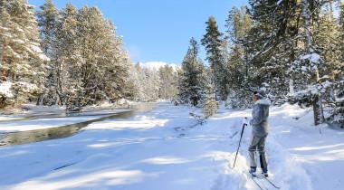 Ski : 10 gestes pour protéger un peu plus la montagne.