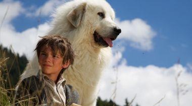 12 films tournés en montagne